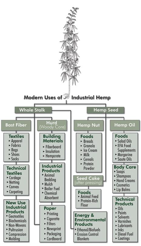 hemp_chart