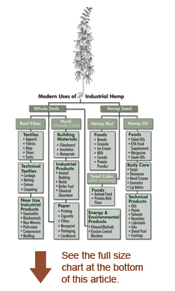 hemp_chart_thumb