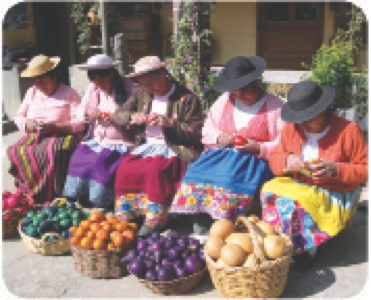 peru-fruit-workers