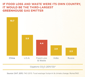Food Wastage Footprint and Climate Change, Rome FAQ