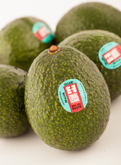Equal Exchange Fair Trade Organic Avocados