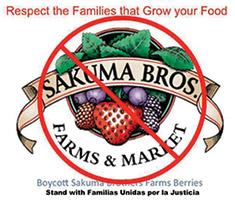 Ban Sakuma Brothers
