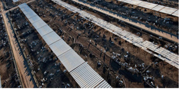 Aerial view of a CAFO in Arizona. Photo Credit: Peter McBride