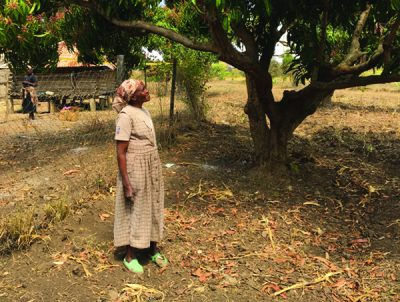 Equal land rights for women can reduce Food Insecurity in Kenya