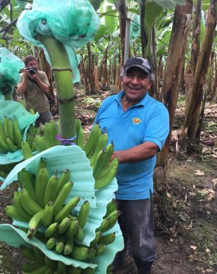 Banana Farmer Don Hugo shows off his fair trade banana harvest