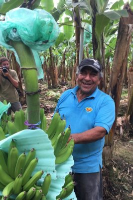 Don Hugo of co-op Asoguabo, one of Equal Exchange's fair trade banana suppliers