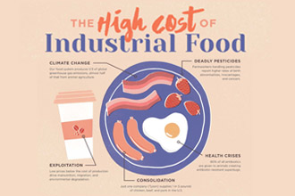 the Cost of Industrial Agriculture Fact Sheet