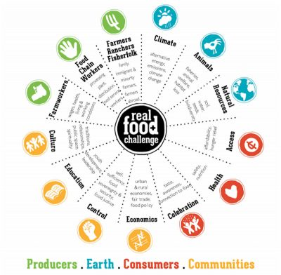 Diagram of the Real Food Wheel