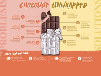 Chocolate bar infographic