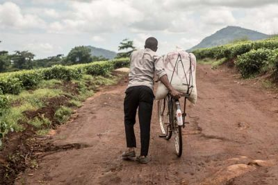 Farm Worker Pushes bike on dirt road - FLO suka - Martine Parry