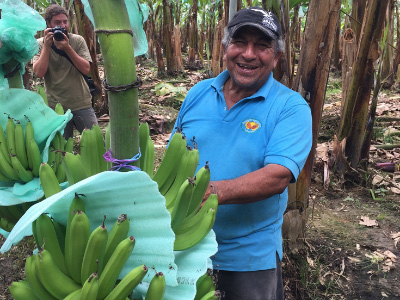 Banana Farmer Hugo Rocafuerte of AsoGuabo co-op in Ecuador stands by one of his banana plants