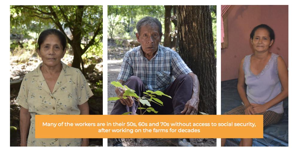Fyffes Workers - Honduras