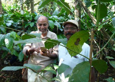Tomy Mathew of Fair Trade Alliance, Kerala, India