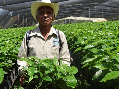 CESMACH Fair Trade Coffee Nursery