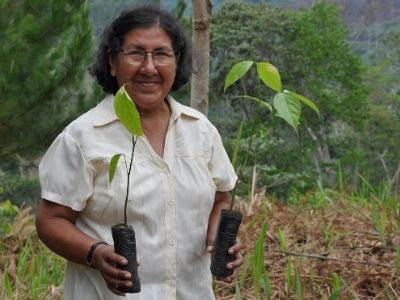 Photo of Esperanza Dionisio Castillo with coffee saplings