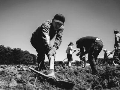 Jose – Pioneer Valley Worker Center Farm - Credit: Jason Kotoch