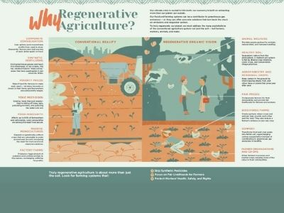 Why Regenerative Agriculture? Issue 20 Center-fold