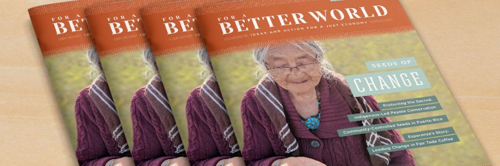 For a Better World Issue 20 Header Image